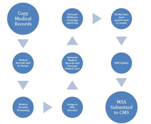 MSA Process