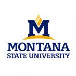 MSU Sends Notification Letters Regarding Unencrypted Workers' Compensation Data