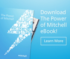Mitchell eBook